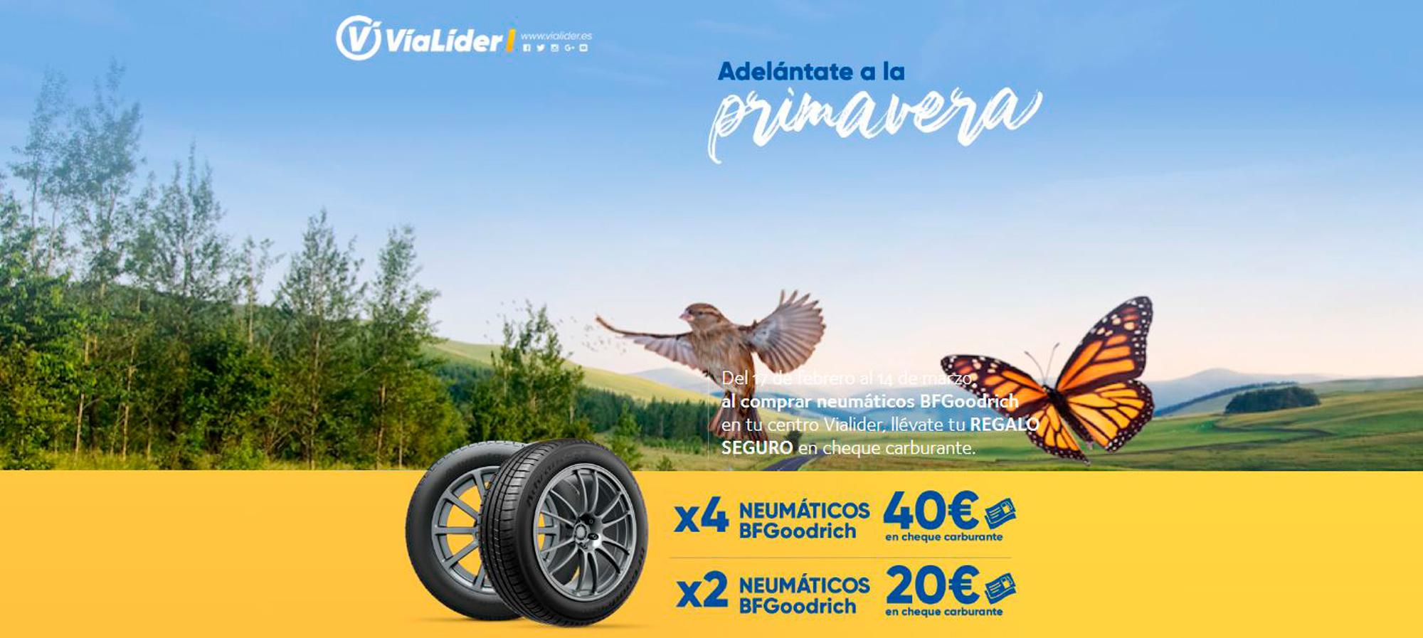 Promoción Vialider