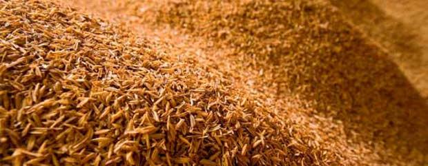Goodyear fabricará neumáticos con cáscaras de arroz